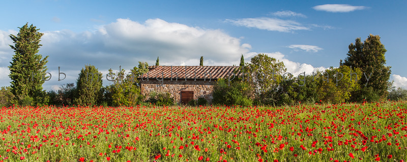 Villa in Poppy Field, near Pienza, Tuscany