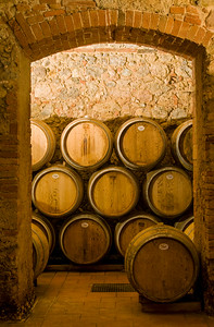 Wine Cellar with Oak Barrels, Chianti