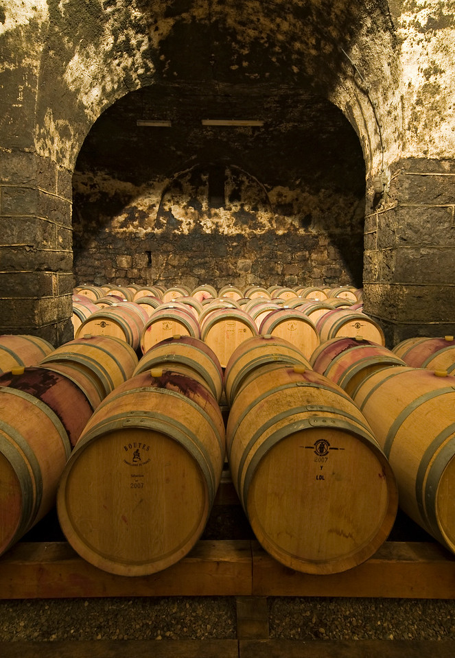 Oak Barrels in Wine Cellar