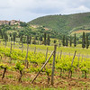 Sant'Antimo Abbey & Vineyard, Castelnuovo dell'Abate, Tuscany