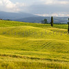 "Field from the end of ""Gladiator"",  outside Pienza, Tuscany"