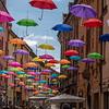 Umbrellas in Ferrara!