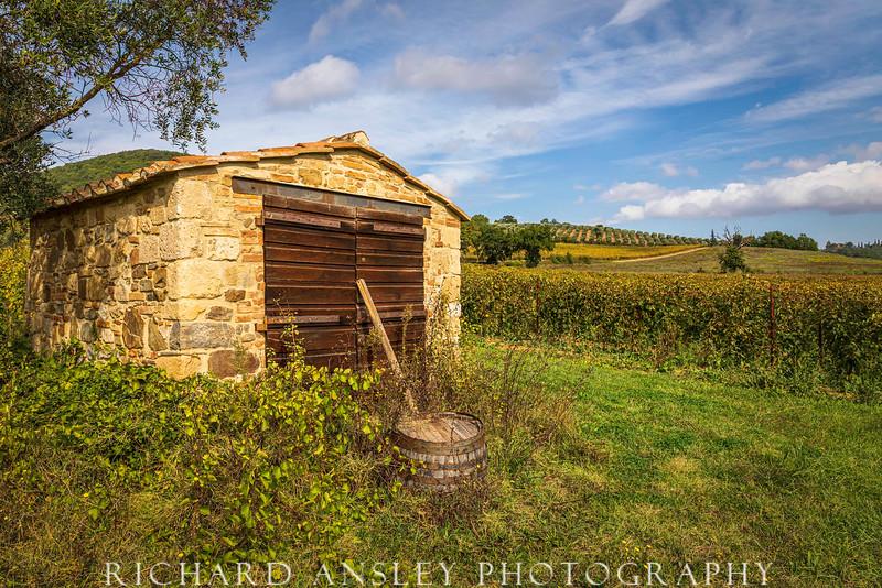 Abbey Vineyard, Tuscany