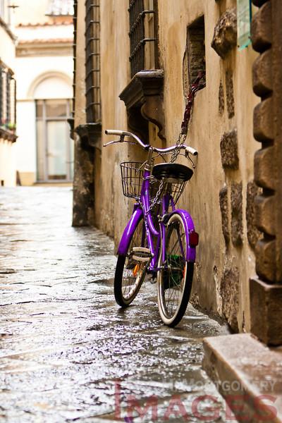 Lucca 20101112 - 0017