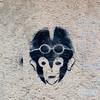 Bologna 20101109 - 0051