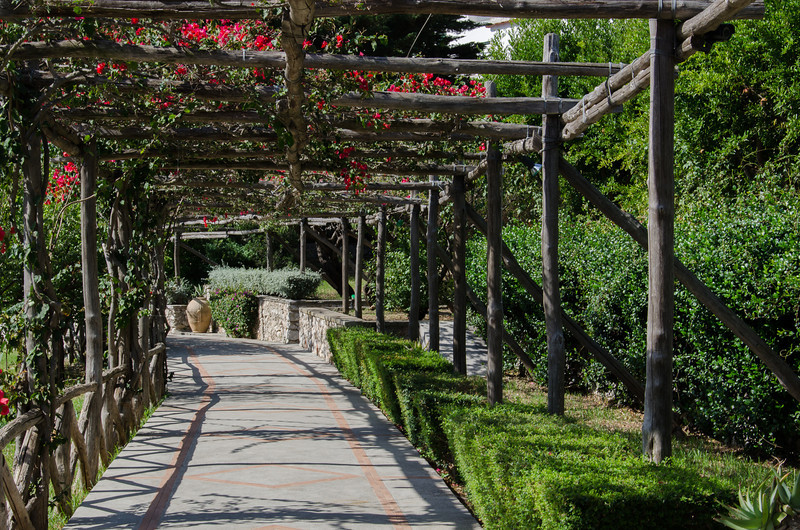 As we wondered around town we came across these beautiful vine covered pathways that lead to the other side of the Island and some very, very nice hotels and spas.