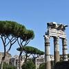 Roman ruins, Roman trees, Roman sky
