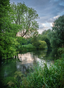 River Itchen near Hockley