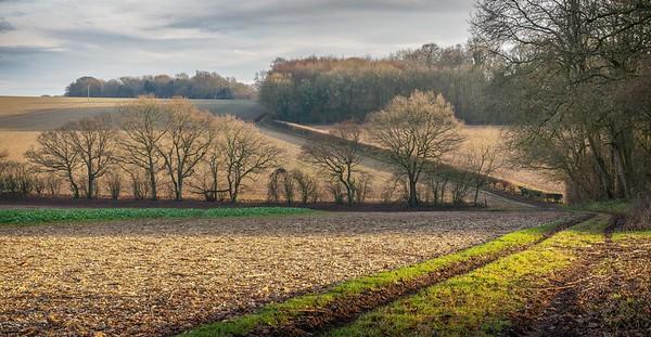 Longwood Estate, near Winchester