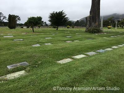 Cypress Lawn Plot