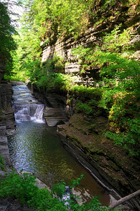 Entrance to gorge at upper Enfield (Robert H. Treman State Park)