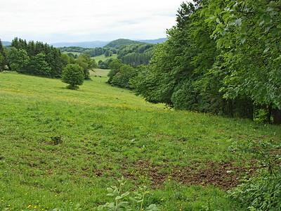 Chamesol, descente vers St Hippolyte