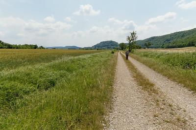 17 juin - Entre Châtillon et la Confrérie (près de 4km de ligne droite)