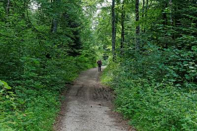 18 juin - Dans les bois au-dessus de Lac de Chalain