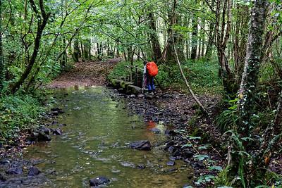 17-09 Ruisseau du Fourneau en montant vers la D314