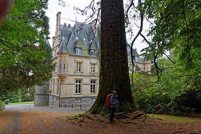 18-09 Bagnoles de l'Orne, le Château et son cèdre