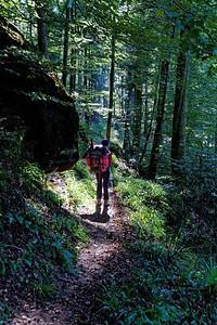 25-09 Etape 5 : Grauftahl - En descendant sur Graufthal