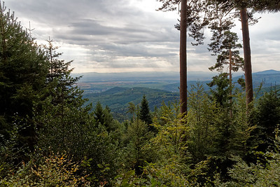 30-09 Etape 10 : Andlau - En montant vers le Mont Ste Odile