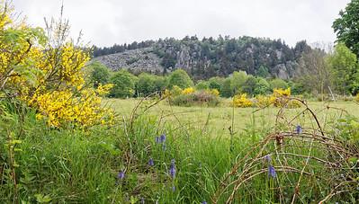 Bouchet Haut, site des Roches