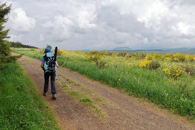 Lisière du bois de Chaideyrac - Mauvais temps sur Le Puy en Velay