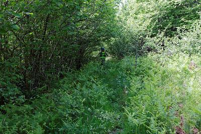 J2 - 100m plus loin - Sur un sentier parallèle