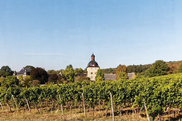 Chateau Vollrads