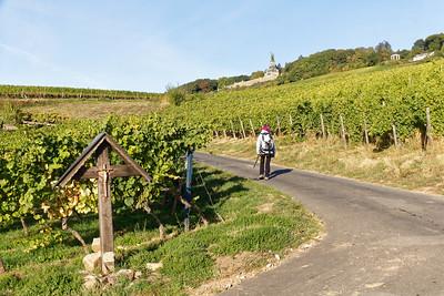 Rüdesheim - Montée au Niederwald