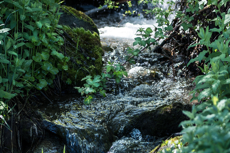 hidden mountain stream bubbling down hill #2