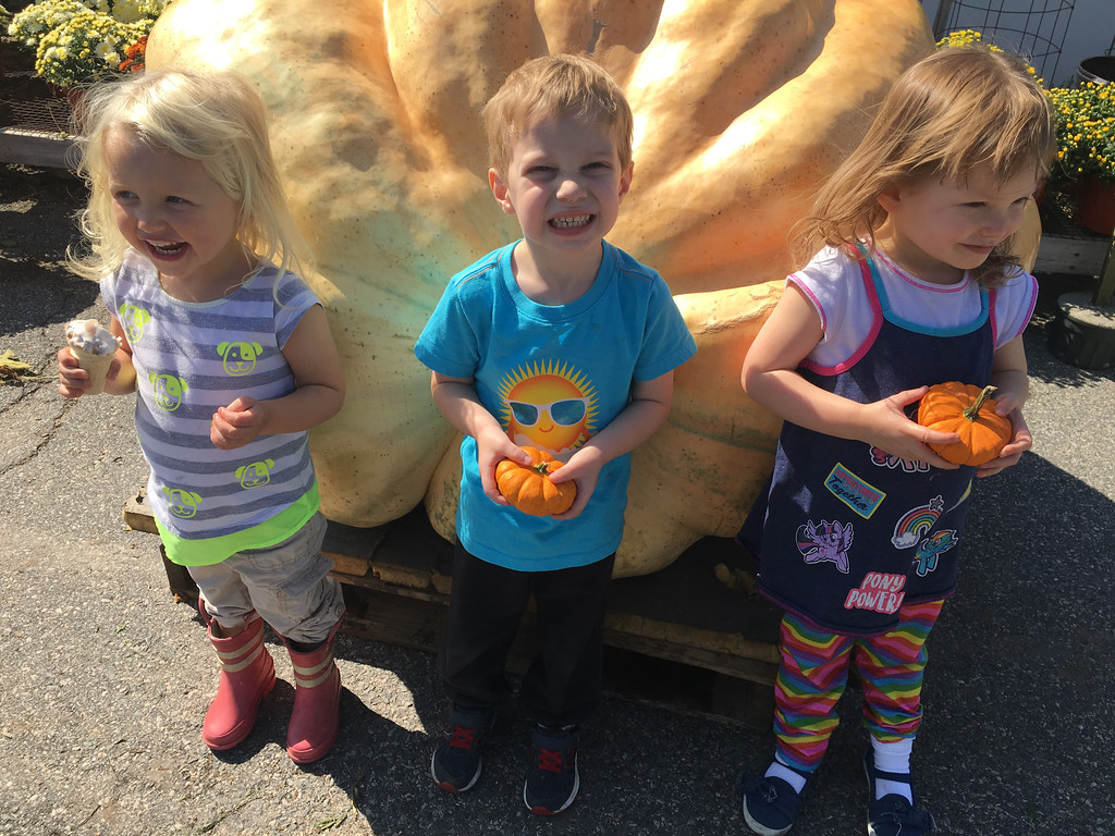 . A trio of 3-year-olds, Quinn Palomaki, Joshua Sonis and Eve Lyman, posted for a photo in front of the giant pumpkin at Griggs Farm in Billerica. Photo by Mary Leach