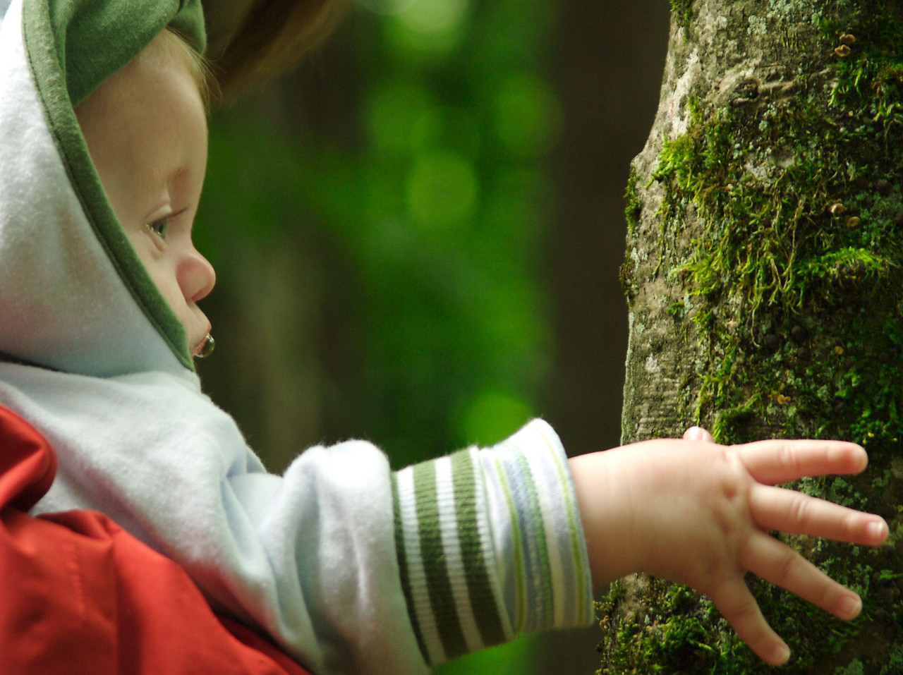 Thursday 8th June 2006 - Cai becomes a tree hugger !!<br /> <br /> Nothing to report, just liked this photograph.