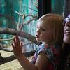 6-23-17 Syracuse, NY: A trip to the Burnet Park Zoo in Syacuse Ny.