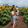 Camillus, Ny 08/12/2016. Aunt and Niece look at pictures of sunflowers at the Camillus Sunflower maze.