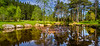 Rogaland Arboret på Sviland i Sandnes