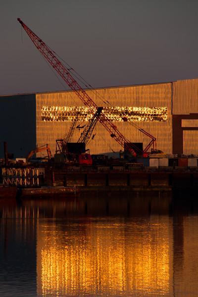 Cranes & Gold