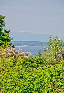peek view from garden 3