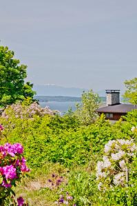 peek view from garden 2