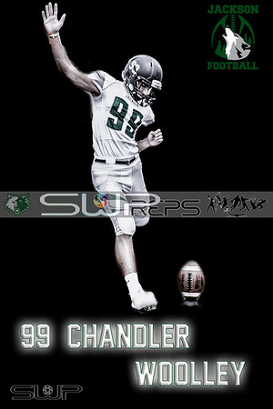 99 chandler-001
