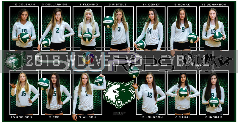 2018 JHS VOLLEYBALL BANNER POSTER C