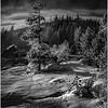 Winter Light Yellowstone