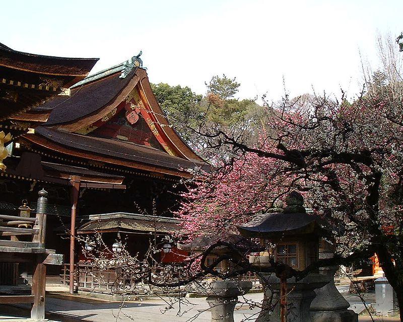 Kyoto 2004 <br /> fuji digital