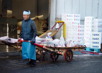 TSUJIJI FISH MARKET - TOKYO
