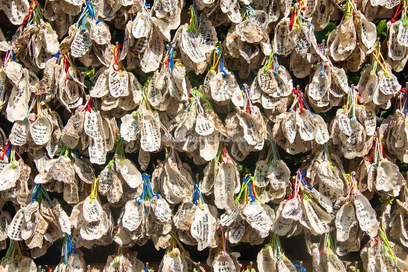 Oyster shell Ema or wishing tablets at Hasedera Temple, Kamakura, Japan