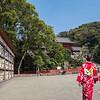 Tsurugaoka Hachimangu Shrine, Kamakura
