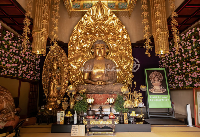Gold Buddha, Hasedera Temple, Kamakura