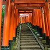 Torii Gates, Fushimi Inari Shrine