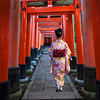 Walking through the Torii Gates, Fushimi Inari Shrine, Kyoto Japan