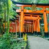 Torii Gates climbing Mt. Inari, Fushimi Inari Shrine, Kyoto