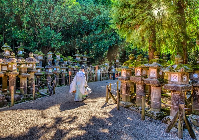 Kasuga-taisha Shrine, Nara, Japan
