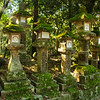 Moss covered lanterns, Kasuga Taisha, Nara