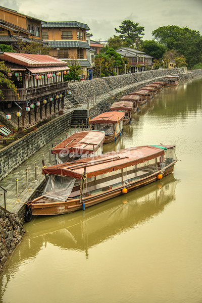 Cormorant fishing boats along Uji River